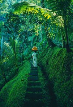 Mystic Ubud, Bali --One of my most favorite spots in the world. it generates peace and tranquility. And, now that I am lucky enough to live on this side of the world, I can escape from a more hectic Thailand. Places To Travel, Places To See, Travel Destinations, Travel Tips, Travel Packing, Vacation Travel, Italy Vacation, Summer Travel, Beautiful World