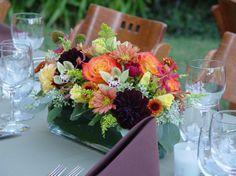 The Wild Orchid Jane Arnold Wedding Flowers Photos on WeddingWire
