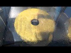 Bizcocho de limón en horno solar