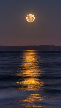 ~~Reflections of a Perigee Moon ~ Super Moon, Burpengary, Australia by Steve Bass~~