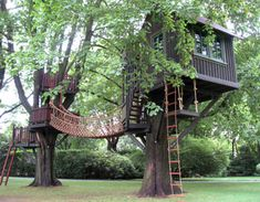 Barbara Butler-In the Media-Extraordinary Play Structures for Kids. Tree House!