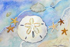 Sand Dollar and Starfish web.jpg 853×576 pixels
