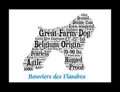 Please pin if you have a bouvier des flandres like me! #like #pin #peacelovebouviers