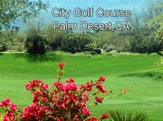 The Desert Willows Golf Course. Feb 2, 16. Palm Desert's city course. Gorgeous public course!