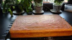 Tento koláč pobláznil celú moju rodinu: Je výborný a BEZ GRAMU MÚKY! Orange, Butcher Block Cutting Board, Gluten Free Recipes, Free Food, Paleo, Cooking, Fitness, Hampers, Yogurt