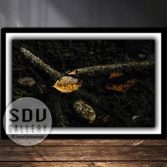 Downloadable Abstract, Print Photo, Abstract, Dream, Leaf, River, Sunlight, Water, Autumn, Tree Trunk, Stone, Vienna, Austria Leaf Photography, Photo Tree, Abstract Print, Landscape Photos, Nature Photos, Printable Wall Art, Digital Art, Vienna Austria, Sunlight