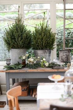 Caring for the Christmas tree properly in a pot and admiring it for many years to come - home ideas and decorations Christmas tree in pot bushy trees by the window Always aspired to learn how to knit, but unsure where do you start? Natural Christmas, Noel Christmas, Christmas 2017, Winter Christmas, Simple Christmas, Farmhouse Christmas Decor, Country Christmas, Natal Country, Decorations Christmas