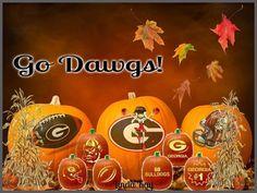 Football Fans, College Football, Georgia Bulldogs Football, Georgia Girls, University Of Georgia, Fall Is Here, Falcons, Fall Decorating, Fall Season