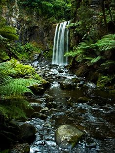 Hopetoun Falls, Otway National Park (along the Great Ocean Road), Australia. Photo: Kenn Leonhardt