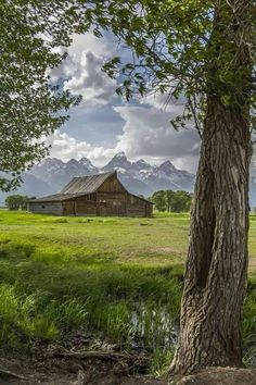Here it is again - that most photographed barn in Wyoming.