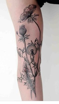 Incredible dandelion poufs!