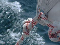 zeilen, catering, varen met schipper, bedrijfsuitje Zeeland, teamuitje Zeeland, praktijkuitje Zeeland, Challenge Team Sailing