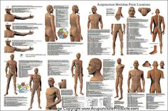 Acupressure Therapy Acupuncture Poster - Acupuncture point location poster showing the meridians and point locations for the 12 main meridians, CV and GV. Anatomical point location descriptions listed for each meridian. Acupuncture Benefits, Acupuncture Points, Acupressure Points, Acupressure Therapy, Acupressure Treatment, Massage Quotes, Scoliosis Exercises, Accupuncture, Reflexology Massage