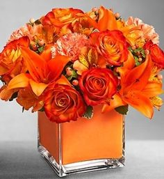 Colors of Love - Orange