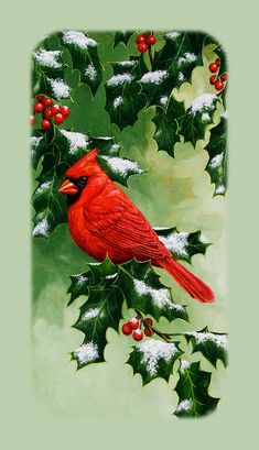 Birds Painting - Male Cardinal And Holly Phone Case by Crista Forest Most Beautiful Birds, Pretty Birds, Christmas Scenes, Christmas Art, Bird Canvas, Cardinal Birds, Cardinal Ornaments, Bird Tree, Christmas Paintings