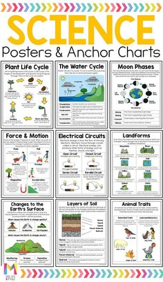 Science Poster Bundle Your or grade students will learn all the important science concepts with these science anchor charts. They are student friendly and cover a range of topics. Great addition to students interactive science journals Third Grade Science Projects, 5th Grade Science Experiments, 6th Grade Science, Middle School Science, Science Anchor Charts 5th Grade, Experiments Kids, Third Grade Math, Kid Science, Physical Science