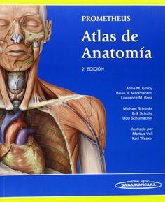 Prometheus : atlas de anatomía / autores, Anne M. Gilroy, Brian R. Movie Posters, Movies, Physical Therapy, Nurse Office, Atlas Anatomy, Nervous System, Human Anatomy, Authors, 2016 Movies