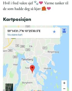 NB: Bilde av død katt i annonsen på www.dyrebar.no.  Rød og hvit hannkatt funnet i Smidsrødveien Vestfold. (link: http://dyrebar.no/72655/) dyrebar.no/72655/ #katt #funnet  Rød og hvit hannkatt funnet i Nøtterøy  05.03.2018 04:35