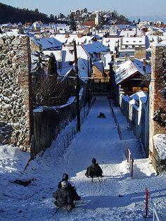 Snow Sledding, Brasov, Romania
