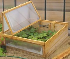 Our Cold Frame lets you grow food all year long!  Grow your own food throughout the winter and start spring plants early with this mini-greenhouse.  Made in the USA with rot resistant eastern white cedar.  https://hosstools.com/product/cold-frame/