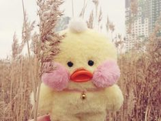 Cute Ducklings, Baby Icon, Duck Toy, Cute Chickens, Little Duck, Cute Stuffed Animals, Baby Chicks, Cute Toys, Animal Pillows