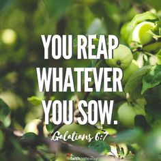 The Law of Reaping and Sowing