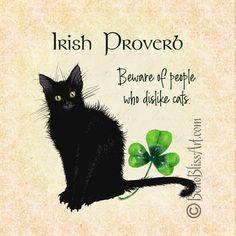 Crazy Cat Lady, Crazy Cats, I Love Cats, Cute Cats, Irish Proverbs, Black Cat Art, Black Cats, Cat Art Print, Dog Cat