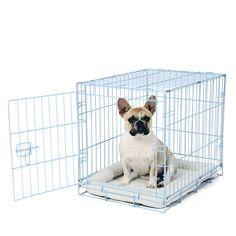 15 besten Our Crates Bilder auf Pinterest   Doppeltüren, Hunde und ...