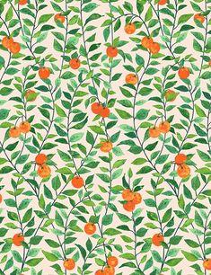 Orange Crush Wallpaper by Nathan Turner, Peach