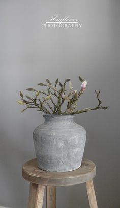 ✚Something to do with the earthenware jug Brenda found in basement??