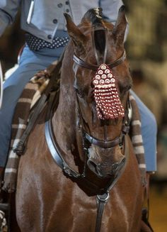 Beautiful silk 'mosquero'. Made in leather for daily work on the 'campo'. Said to keep the flies out of the eyes as it sways back and forth to the rythm of the horses cadence. In competition the swaying back in forth is desired as it shows the horse is loose and has a correct cadence.