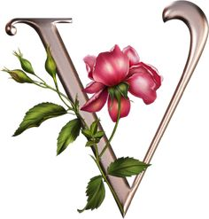 "Photo from album ""Rose_Alphabet"" on Yandex. Alphabet Letters Design, Fancy Letters, Flower Alphabet, Alphabet Art, Alphabet And Numbers, Monogram Letters, Stencil Lettering, Lettering Design, Painted Letters"