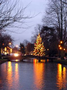 River Christmas tree in Bourton on the Water, Gloucestershire. Christmas Events, Christmas Villages, Winter Christmas, Christmas Trees, Xmas, English Christmas, A Christmas Story, The Beautiful Country, Beautiful Places