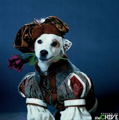 WISHBONE I want a tattoo of my dog Dexter dressed in this or something similar because he thinks he is human (0: