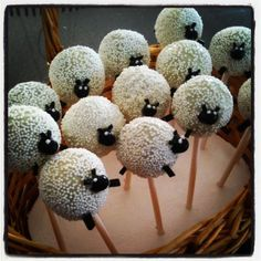 Sheep cakepops. put numbers on side