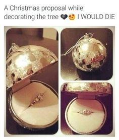 Proposal while decorating the tree//Christmas proposal