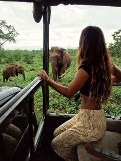 Surf, Safari, and Shavasana in Sri Lanka — Eryn Krouse - travel bucket lists Travel Around The World, Around The Worlds, Travel Aesthetic, Adventure Aesthetic, Travel Goals, Travel Tips, Travel Vlog, Travel Checklist, Travel Videos