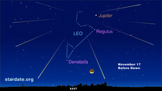 Meteors appear to come out of the constellation Leo during the Leonid meteor shower, which is expected to peak on Monday.