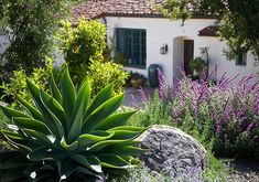 agave and sage make a nice combo. Landscaping Design Tips from Margie Grace | Traditional Home