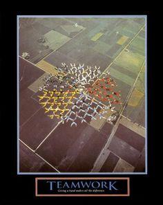 TEAMWORK Skydivers Motivational Poster