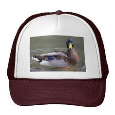 Mallard Trucker Hats