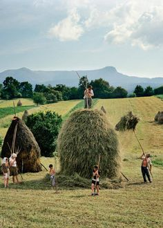 PHOTOS: Transylvania: Magic Hay Country (PHOTOS)