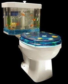 Who lives in an aquarium on a toilet?