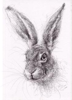New Stock - ORIGINAL A4 Wildlife Drawing of a HARE Animal Art by Belinda Elliott  | eBay