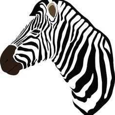 Illustration of a Zebra's head without mane colour
