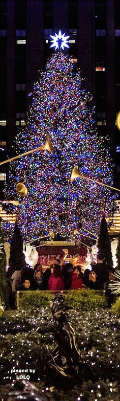 Rockefeller Center Christmas Tree, New York City! .❤️