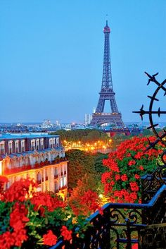 a beautiful view of the Eiffel Tower and Paris on a summer night