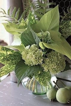 Green Hydrangea arrangement - Become your own florist Create luscious flower arrangements at home. Green Hydrangea, Hydrangea Flower, Green Flowers, Beautiful Flowers, Cactus Flower, Lace Flowers, Exotic Flowers, Green Plants, Yellow Roses