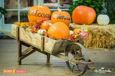 Use your leftover pumpkins to create a Fall Harvest Welcome Wagon! Crafted by @kennethwingard on Home and Family!