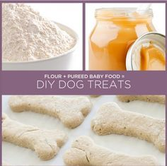 ♥ DIY Dog Stuff ♥  DIY dog food out of baby food - I know Dani liked some Turkey and veggies ones. :)